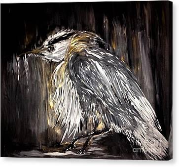 Old Man Bird Canvas Print