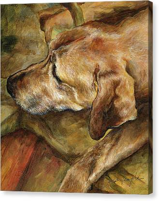 Ridgeback Canvas Print - Old Man by Leisa Temple