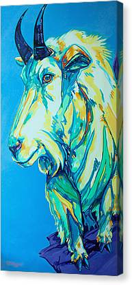 Mountain Goat Canvas Print - Old Man Of The Mountain by Derrick Higgins