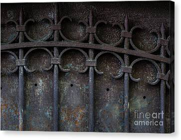 Grill Canvas Print - Old Metal Gate by Elena Elisseeva