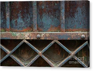 Grill Canvas Print - Old Metal Gate Detail by Elena Elisseeva
