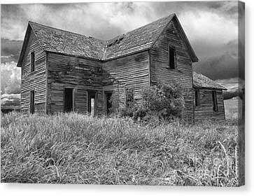 Old Montana Farmhouse Canvas Print by Sandra Bronstein