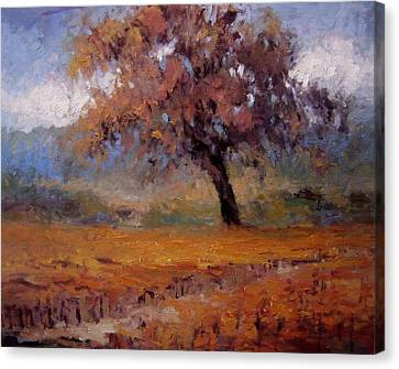 Old Oak Tree In The Vineyard Canvas Print by R W Goetting