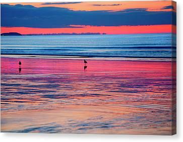 Old Orchard Beach Sunrise Canvas Print by Joann Vitali