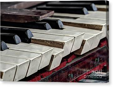 Canvas Print featuring the photograph Old Organ Keys by Michal Boubin
