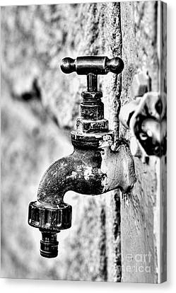 Old Outdoor Tap - Black And White Canvas Print