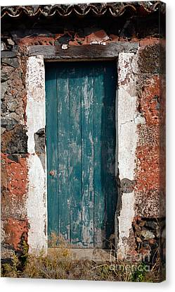 Old Painted Door Canvas Print by Gaspar Avila