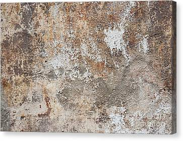 Old Painted Wall Canvas Print by Elena Elisseeva