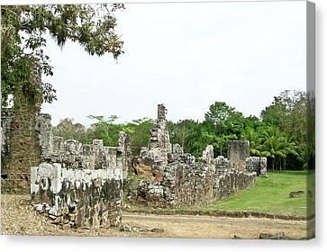 Old Panama City Ruins 8 Canvas Print by Douglas Barnett