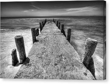 Old Pier Canvas Print by Dapixara Art