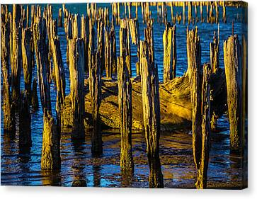 Old Pier Posts In Evening Light Canvas Print by Garry Gay