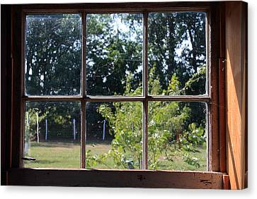 Old Pitted Glass Window Canvas Print by Joanne Coyle
