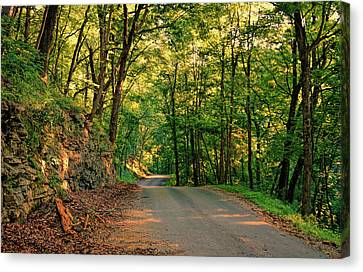 Canvas Print featuring the photograph Old Plank Road by Cricket Hackmann