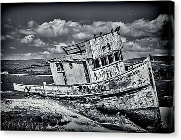 Old Point Reyes Black And White Canvas Print