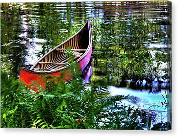 Old Red Canoe Canvas Print by David Patterson