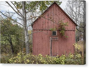 Old Red Shack Canvas Print by Edward Fielding