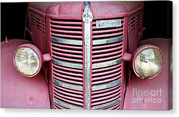 Canvas Print featuring the photograph Old Red by Stephen Mitchell