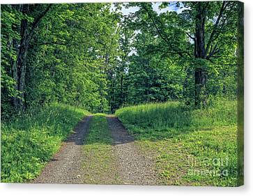 Country Lanes Canvas Print - Old Road Through The Woods by Edward Fielding