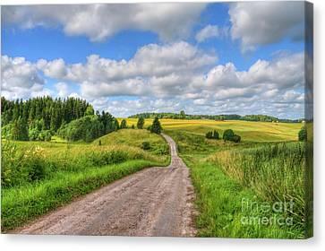 Old Rural Road Canvas Print by Veikko Suikkanen