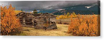 Old Shane Cabin Canvas Print