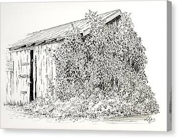 Old Shed Canvas Print by Deborah Dallinga