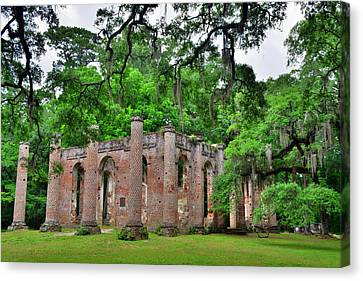 Old Sheldon Church Ruins Beaufort Sc 3 Canvas Print