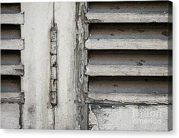Canvas Print featuring the photograph Old Shutters by Elena Elisseeva
