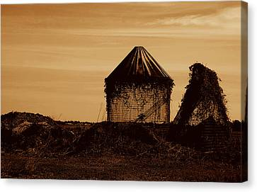 Canvas Print featuring the photograph Old Silo by Kathleen Stephens