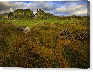 Canvas Print featuring the photograph Old Slate Quarry At Rhyd Ddu by Richard Wiggins