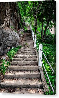 Old Steps Canvas Print by Adrian Evans