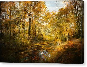 Canvas Print featuring the photograph Old Stream by John Rivera