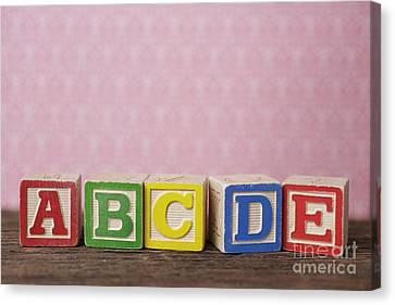 Old Toy Alphabet Blocks Canvas Print by Edward Fielding
