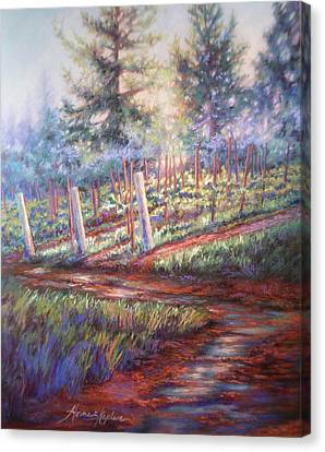 Old Vines And Fresh Rain Canvas Print