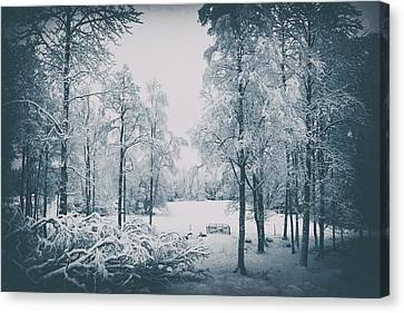 Canvas Print featuring the photograph Old Vintage Winter Landscape by Christian Lagereek