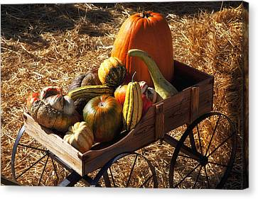 Bales Canvas Print - Old Wagon Full Of Autumn Fruit by Garry Gay