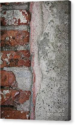 Old Wall Detail Canvas Print by Elena Elisseeva