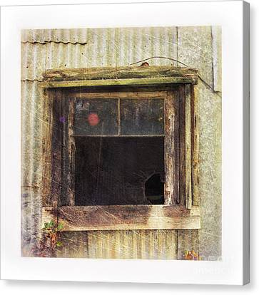 Old Window 8 Canvas Print by Priska Wettstein