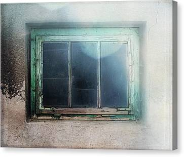 Painted Details Canvas Print - Old Window by Terry Davis
