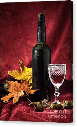 Old Wine Bottle Canvas Print by Carlos Caetano