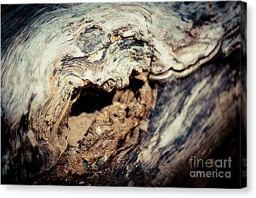 Old Wood Abstract Vintage Texture Artmif Canvas Print