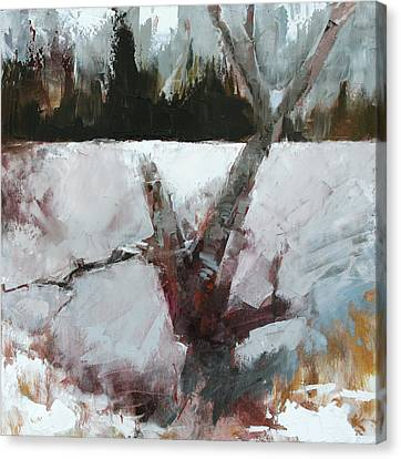Old Wood Canvas Print by Gregg Caudell