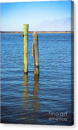 Old Wood Pilings In Blue Water Canvas Print by Colleen Kammerer