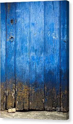 Old Wooden Door Canvas Print by Carlos Caetano