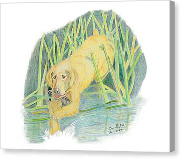 Old Yeller Canvas Print by Daniel Shuford