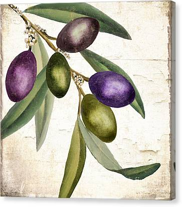 Italian Kitchen Canvas Print - Olive Branch IIi by Mindy Sommers
