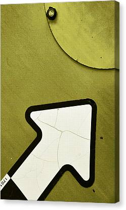 Olive...raw Steel Canvas Print by Tom Druin