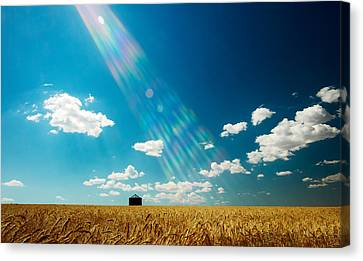 Omnipotent Canvas Print by Todd Klassy