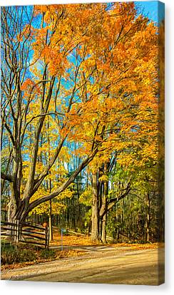 On A Country Road 5 - Paint Canvas Print by Steve Harrington