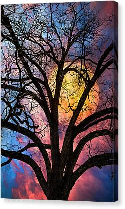 Tropical Colors Stain Glass Canvas Print - On A Moonlit Night by Debra and Dave Vanderlaan