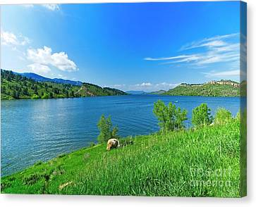 On A Perfect Summer Afternoon Canvas Print by Jon Burch Photography